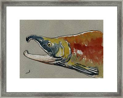 Sockeye Salmon Head Study Framed Print by Juan  Bosco