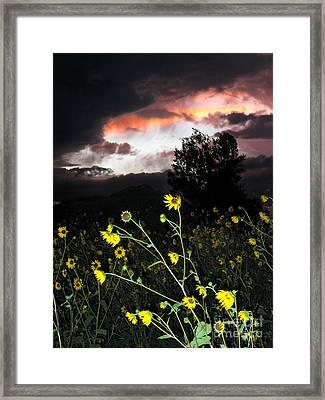 Socorro Sunset Framed Print by Steven Ralser