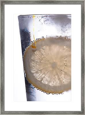 Soda With Lemon Framed Print by David Pinsent