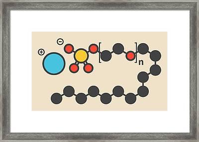 Sodium Laureth Sulphate Molecule Framed Print