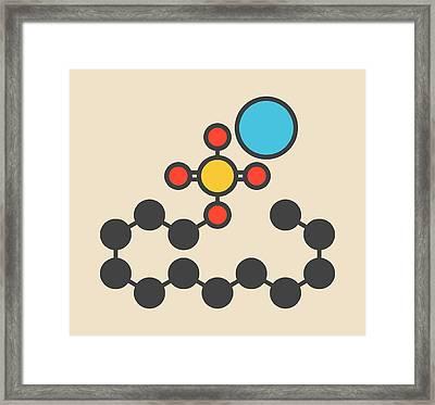 Sodium Lauryl Sulfate Molecule Framed Print