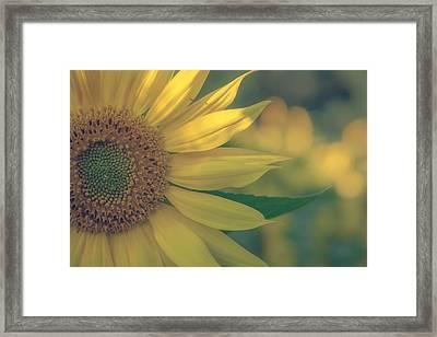 Softly Does It Framed Print by Chris Fletcher
