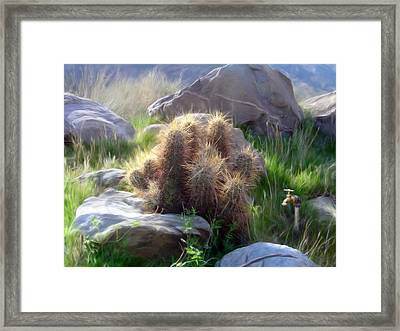 Soft And Sharp Framed Print by Snake Jagger