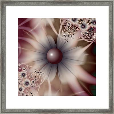 Soft And Sweet Framed Print