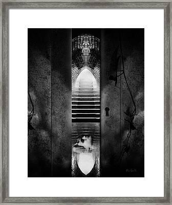 Soft Asylum Framed Print
