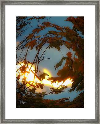 Soft Autumn Dawn Framed Print