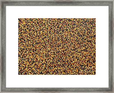Soft Black With Brown Framed Print by Dean  Triolo