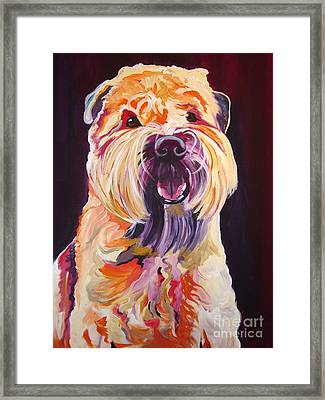 Soft Coated Wheaten Terrier - Bailey Framed Print by Alicia VanNoy Call
