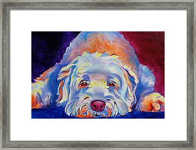 Soft Coated Wheaten Terrier - Guinness Framed Print by Alicia VanNoy Call