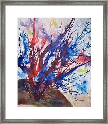 Soft Coral Splatter Framed Print