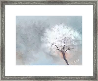 Soft Dream Framed Print