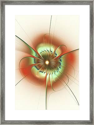 Soft Elegance Framed Print