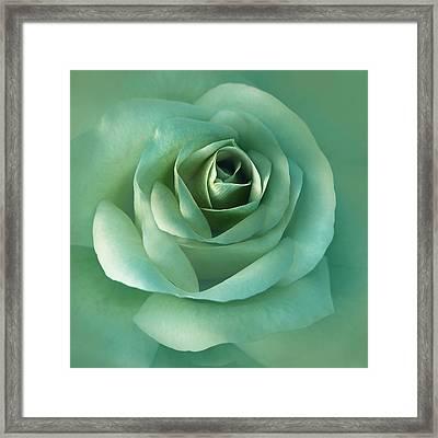 Soft Emerald Green Rose Flower Framed Print by Jennie Marie Schell