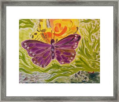 Soft Flutters Framed Print