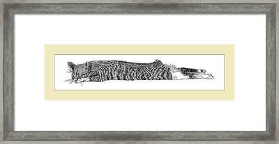 Soft Kitty Warm Kitty Framed Print by Jack Pumphrey