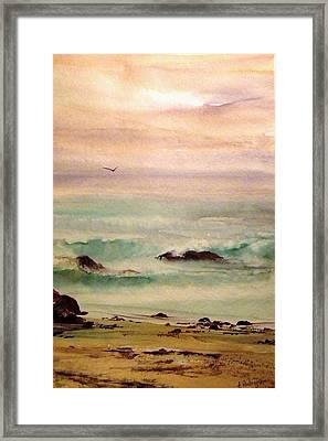 Soft Light Penguin Beach Framed Print by Evelyn Antonysen