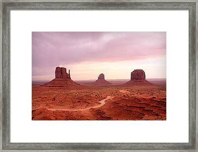 Soft Mittens Framed Print