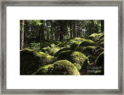 Framed Print featuring the photograph Soft Mossy Rocks by Kennerth and Birgitta Kullman