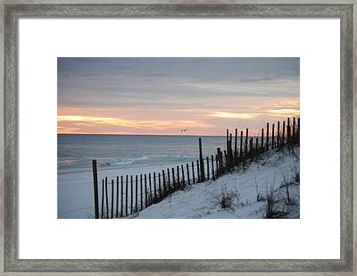 Soft Palette Framed Print