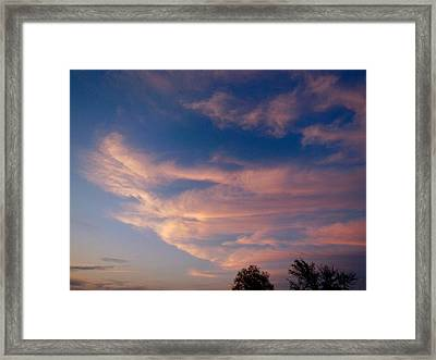Soft Pink Clouds Framed Print by Virginia Forbes