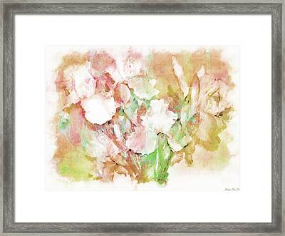 Soft Pink Iris Photo Art Framed Print by Debbie Portwood