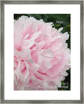 Framed Print featuring the digital art Soft Pink Peony by Jeannie Rhode