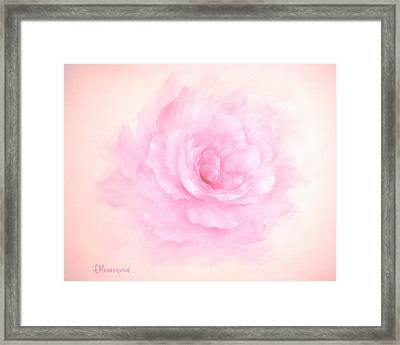 Soft Pink Rose Framed Print