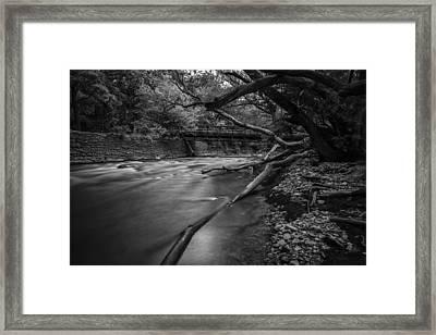 Soft Reflected Framed Print by CJ Schmit