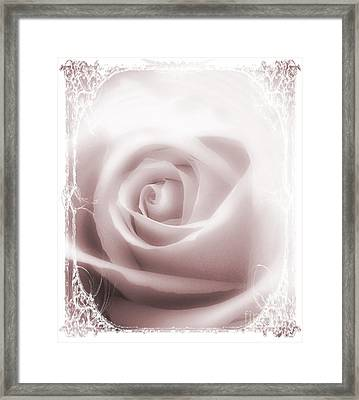 Soft Rose Framed Print by Michelle Frizzell-Thompson