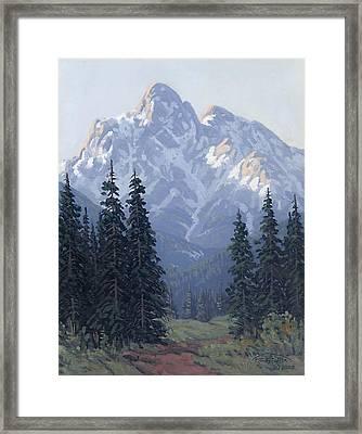Soft Shades Of Spring Framed Print by Randy Follis
