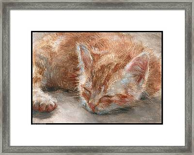 Soft Sleeper Framed Print by Diana Moses Botkin