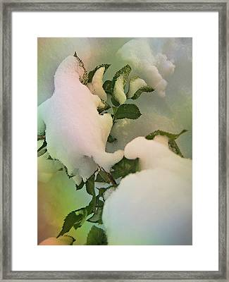 Soft Snow Forms 4 Framed Print by Shirley Sirois