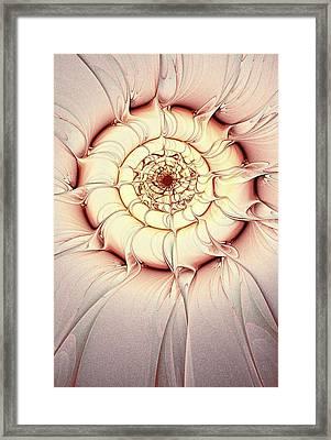 Soft Spot Framed Print by Anastasiya Malakhova