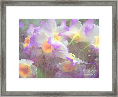 Soft Subtle Orchids Framed Print