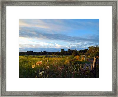 Soft Summer Morning Framed Print