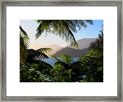 Soft Sun On Hills Through Ferns Framed Print