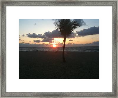 Soft Sunrise Framed Print