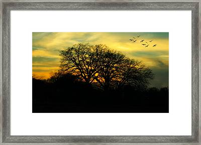 Soft Sunset Framed Print by Joan Bertucci