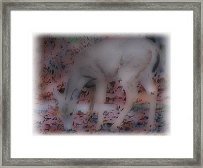 Soft Touch Art 1 Framed Print by Debra     Vatalaro