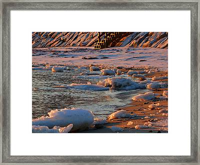 Soft Winter Morning Framed Print by Dianne Cowen