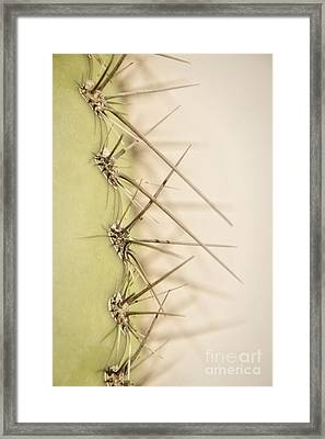 Soft Yet Sharp Framed Print