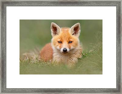 Softfox -young Fox Kit Lying In The Grass Framed Print by Roeselien Raimond