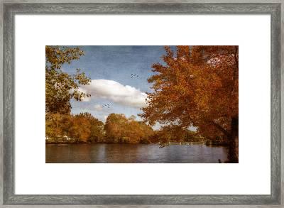 Softly Autumn Framed Print