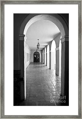 Framed Print featuring the photograph Softly Lit By Mother Nature by Lawrence Burry