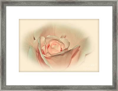 Softly Peach Framed Print by Kaye Menner