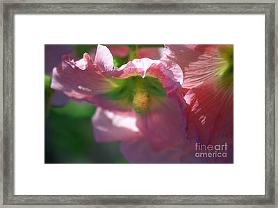 Softly Tenderly Framed Print