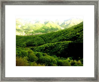 Softness Framed Print by Lucy D