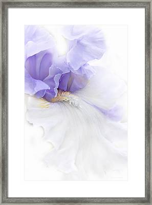 Framed Print featuring the photograph Softness Of A Lavender Iris Flower by Jennie Marie Schell