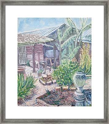 Soil For Life Framed Print