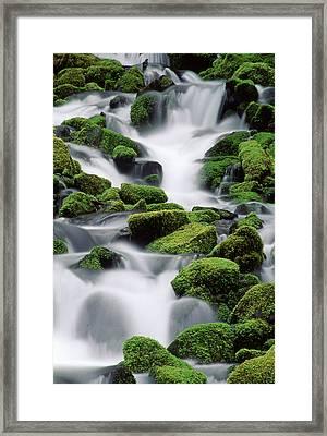 Sol Duc Stream Framed Print